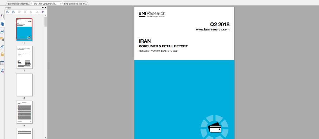 گزارشهای پیشبینی بیزنس مانیتور Iran Consumer & Retail Reportگیگاپیپر